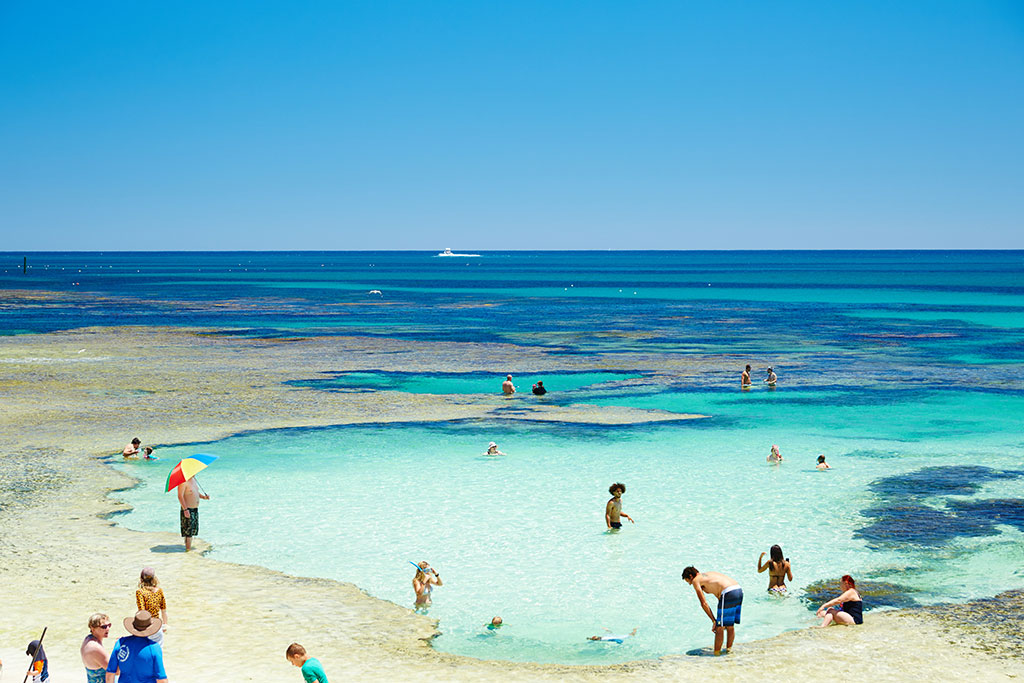 Snorkelling Rottnest with Kids